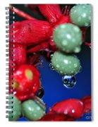 Wet Berries Spiral Notebook