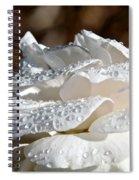 Wet Diamonds Spiral Notebook