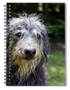 Wet Dog Spiral Notebook