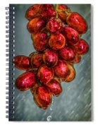 Wet Grapes Four Spiral Notebook