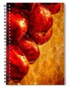 Wet Grapes Three Spiral Notebook