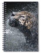 Wet Jaguar  Spiral Notebook