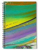 Wet Paint 6 Spiral Notebook