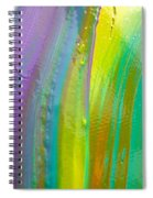 Wet Paint 8 Spiral Notebook