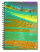 Wet Paint 9 Spiral Notebook