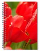 Wet Tulips Spiral Notebook