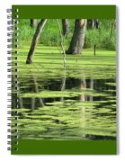 Wetland Reflection Spiral Notebook