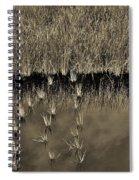 Wetland Sky Spiral Notebook