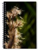 Wetland Sparkles Spiral Notebook