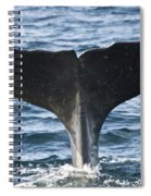 Whale Diving Spiral Notebook