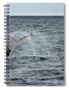 Whale Of A Time Spiral Notebook