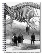Whale Skeleton, 1866 Spiral Notebook