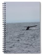 Whale Tail 2 Spiral Notebook