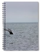 Whale Tail 8 Spiral Notebook