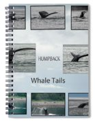 Whale Tails Spiral Notebook