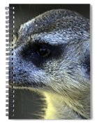 What A Face Spiral Notebook