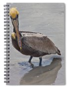 What Are You Lookin At Spiral Notebook