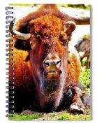 What... Spiral Notebook