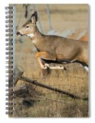 What Fence Spiral Notebook