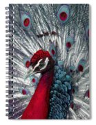 What If - A Fanciful Peacock Spiral Notebook
