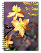 What You Do Today... Spiral Notebook