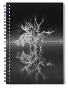 Whats Left Black And White Spiral Notebook