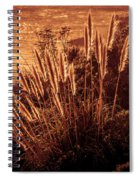 Wheat Grass Spiral Notebook