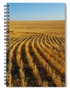 Wheat Rows Spiral Notebook