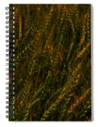 Wheat Waving In The Wind Spiral Notebook