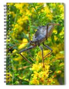 Wheel Bug  Spiral Notebook