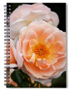 Wheeping Rose Spiral Notebook