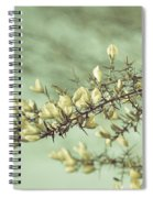 When Gorse Flowers Sing Their Melody Spiral Notebook