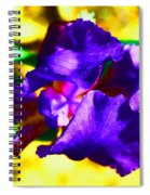 When Iris Eyes Are Smiling Spiral Notebook