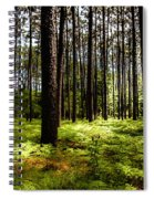 When The Forest Beckons Spiral Notebook