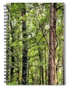 When The Forest Calls To Me Spiral Notebook