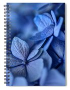 When You're Feeling Blue Spiral Notebook
