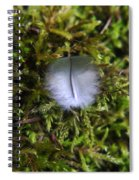 Where A Feather Finds Itself Spiral Notebook