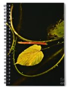 Where Peaceful Waters Flow Spiral Notebook