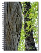 Where The Tree Meets The Stone Spiral Notebook