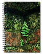 Where There Is A Will Spiral Notebook