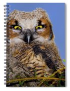 Where'd Ya Get Those Peepers Spiral Notebook