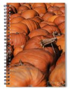 Which One Is The Great Pumpkin Spiral Notebook