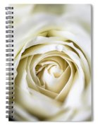 Whie Rose Softly Spiral Notebook