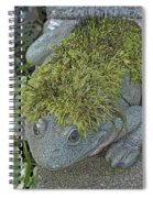 Whimsical Frog Spiral Notebook