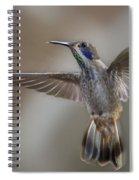 Whimsical Gem... Spiral Notebook