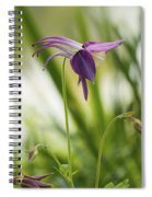 Whimsical Magical Columbine Spiral Notebook