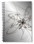 Whimsy Q Spiral Notebook