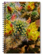 Whipple Snake  Spiral Notebook