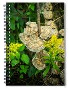Whirled Turkey Fungus Spiral Notebook
