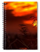 Whispering Sunset Spiral Notebook